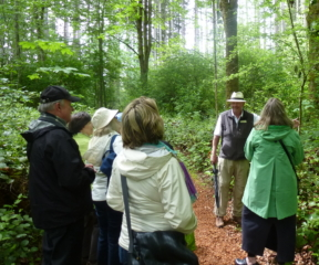 Bloedel Reserve & Bainbridge Island Museum of Art