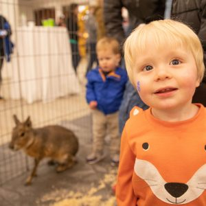 A boy smiles at an indoor petting zoo.